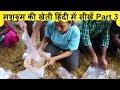 Learn Mushroom Farming PART 3 मशरुम की खेती हिंदी में सीखें