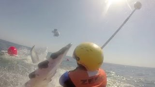 Marine Rescuer Gets Slapped In Face By Whale