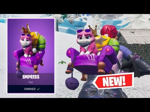 NEW EMPRESS CAT BACK BLING GAMEPLAY IN FORTNITE!