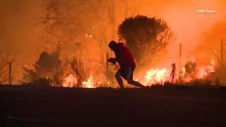 UN HOMME SAUVE UN LAPIN DES FLAMMES A LOS ANGELES