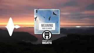 """Meaning"" Freestyle / Trap Beat Free Rap Hip Hop Instrumental (Prod. DJ Hoppa)"
