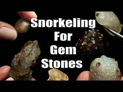 NSW Gem Fossicking Snorkeling For Crystals - Underwater Pros