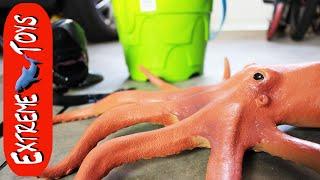 Восьминіг Ховати Частина 2! Іграшка морське тварина має проблеми з чорнилом.