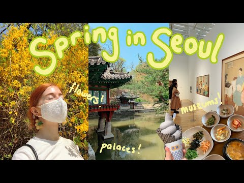 perfect spring day VLOG 🌱palaces and cafe hopping in seoul, korea