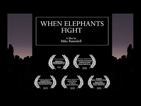 Download #StandWithCongo's When Elephants Fight - Trailer