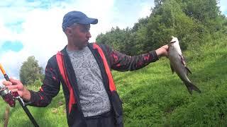 Жерех Щука Окунь Рыбалка на поппер