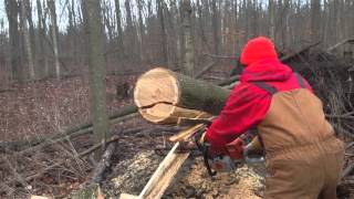 Cheap heat for you - Wood Cutting on the farm- ECO Free