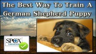▶▶Best Method To Train A German Shepherd Puppy [ FAST RESULTS] How To Train My German Shepherd Puppy