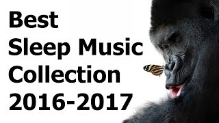 Baixar Best of the Best Music for Sleep Meditation Compilation 2016 - 2017 (5 hours sleeping music)
