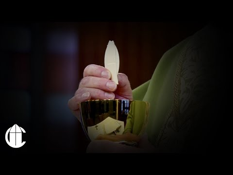 Catholic Mass: 11/29/19 | Friday of the Thirty-fourth Week in Ordinary Time