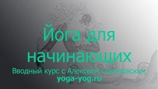 Хатха-йога, урок для начинающих #1