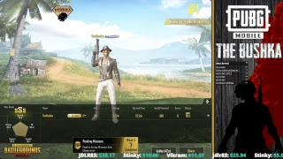 CHICKEN DINNERS PUBG MOBILE WITH BUSHKA