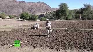 Налогоплательщики США борются с афганскими наркотиками, но индустрия лишь расцветает(Американская частная охранная фирма получила более полумиллиарда долларов за работу, которую выполнить..., 2015-04-04T16:42:53.000Z)