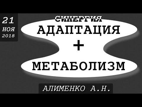 Реальность синергии адаптационного и метаболического синдрома. Алименко А.Н. (21.11.2018)