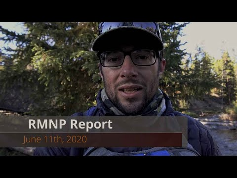 Video Fly Fishing Report: Rocky Mountain National Park 6-11-20