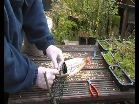 bird feeders how to stop rats and squirrels  YouTube
