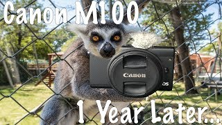 Canon M100 - 1 Year Later