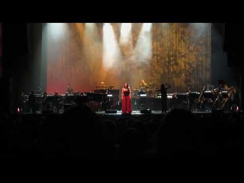 Evanescence- Lost in Paradise live Kansas City