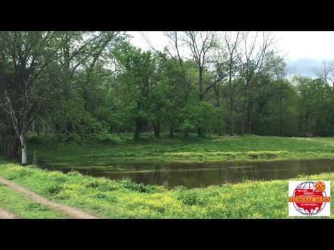 Historic NO RESERVE Adair County Kentucky Land & Timber Auction