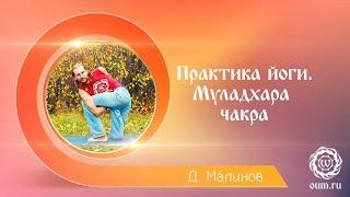 Практика йоги. Муладхара чакра. Денис Малинов