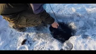 Эвенкия Разрешенная рыбалка на сети Малочисленным народам севера можно ловить на еду по закону