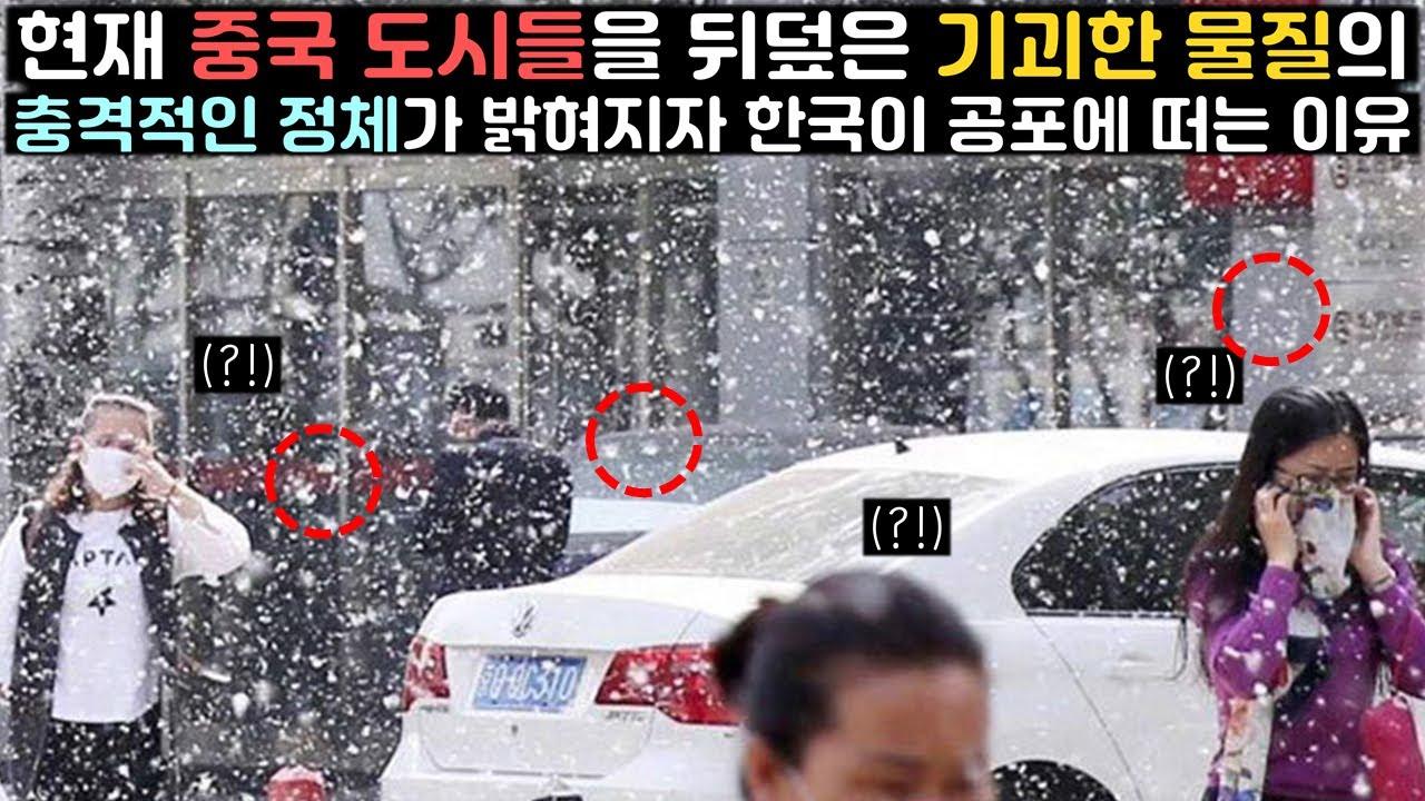 현재 중국 도시들을 뒤덮은 기괴한 물질의 충격적인 정체가 밝혀지자 한국인들이 공포에 떠는 이유