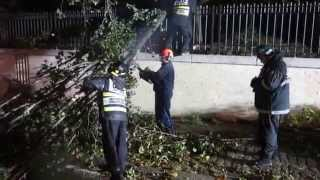 cwsp shmira of boro park working with nypd during hurricane sandy