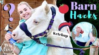 BARN HACKS | Life Hacks Every Equestrian NEEDS to Know! | This Esme