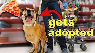 Buying a Homeless Dog EVERYTHING He Touches! (before he meets his new mom)