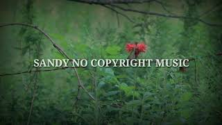 Download no copyright music | music | tubidy mp3 | sleep music | meditation music | sandy no copyright music