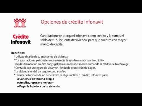 Cuales Son Los Tipos De Creditos Del Infonavit Youtube