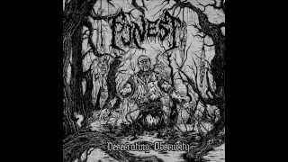 FUNEST - Desecrating Obscurity (Full Album)