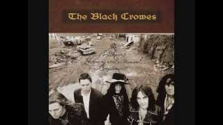 The Black Crowes - No Speak No Slave
