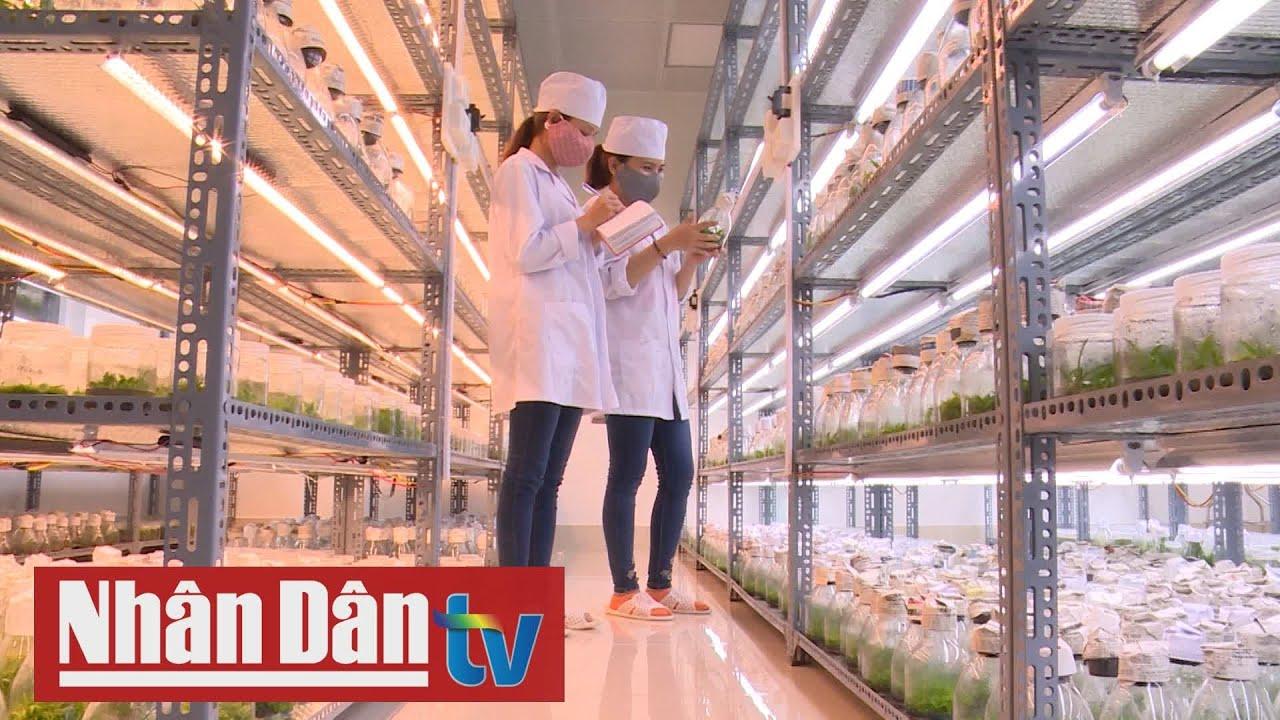 Nông nghiệp công nghệ cao – Bao giờ thành hiện thực?