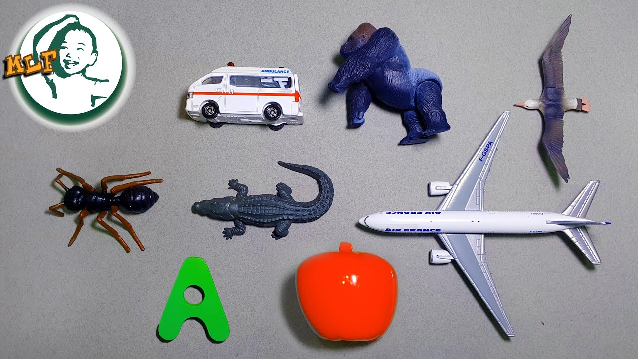 Toys That Start With A : Words that start with a learn alphabet common