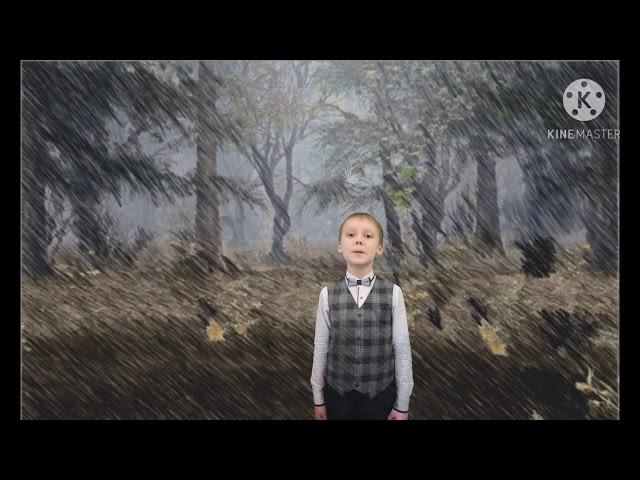 Изображение предпросмотра прочтения – МирославАксёнов читает произведение «Буря» С.А.Есенина