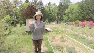 【おうちYOJOEN】5月の養生園ハーブガーデンツアー