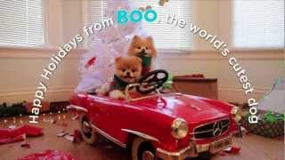 A Holiday Adventure with Boo, The World