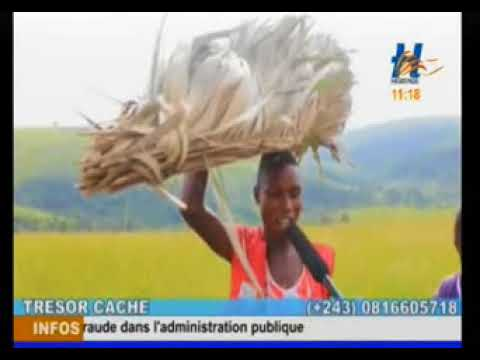 Documentaire agriculture au congo