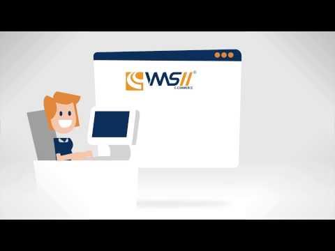Succesvol ondernemen online - E-commerce met VMSII van ...