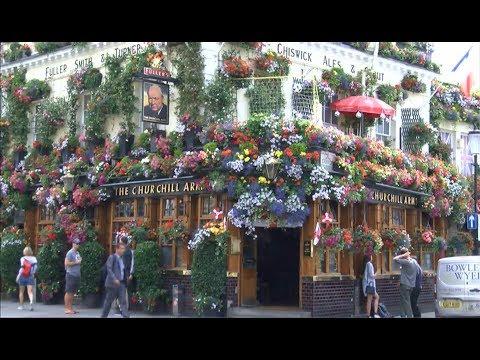 Blooming marvelous pub flowers & social media (UK) - BBC London News - 30th July 2018
