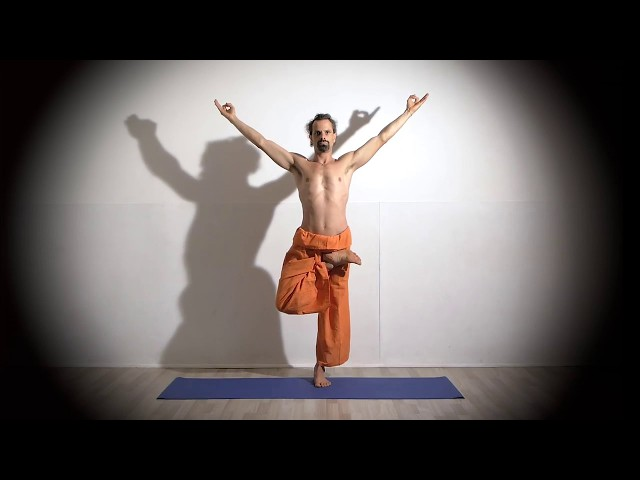 Enchaînement Parivriita Ardha Baddha Padma Vrikshasana / Posture de l Arbre en Demi-Lotus.