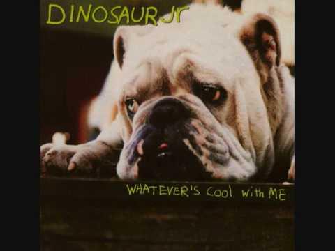 Dinosaur Jr - Not You Again