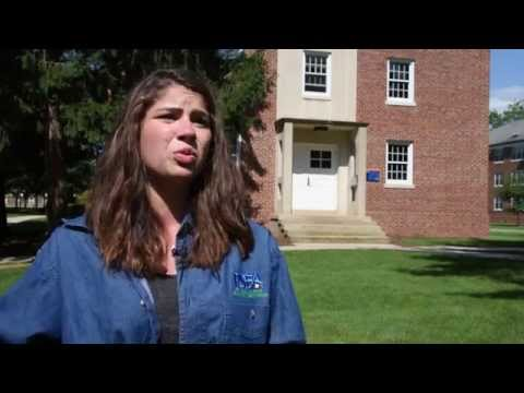 What is Student PSEA?