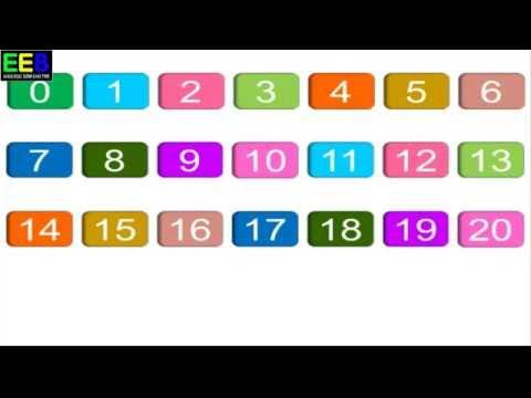 Dạy bé học số| Bé học số từ 0 đến 20| Giáo dục sớm cho trẻ
