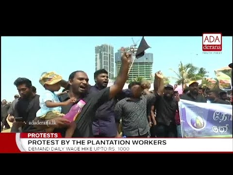 Estate workers protest in Colombo demanding daily wage of Rs 1000 (English)