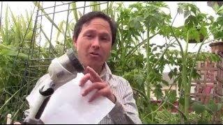 Wie Sie den Besten Boden Für die Pflanzung eines Obst-Baum & Mehr Gartenarbeit Q&A