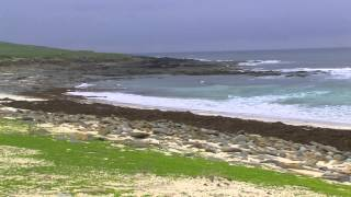 Die Orkney Insel Westray