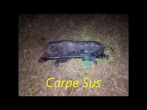 Tripod Hog Kill With Pulsar Trail XP50 Thermal Sight - Necropsy