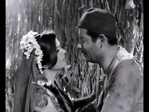 هل تعرف أن صلاح منصور ليس البطل الأصلى لفيلم الزوجة الثانية